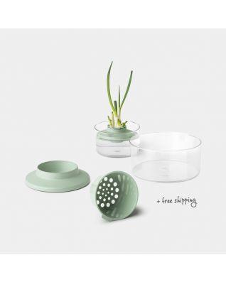 Kit de plantation Pour herbes et légumes, TASTY+ - Jade Green