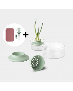 Regrow kit set Incl. herbal scissors & cutting board